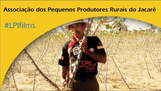 Associação dos Pequenos Produtores Rurais do Jacaré – Opus Prize 2011