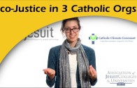 Eco-Justice Profile for 3 Catholic Organizations