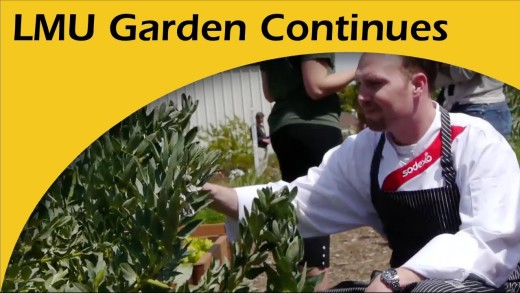 Loyola Marymount U. Continues Sustainable Garden